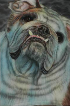 This airbrushed bulldog was painited for a customer on an airbursh t-shirt